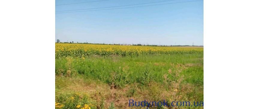 Продам земельный участок Одесса. Цена договорная.
