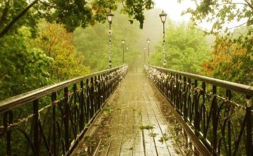 Мариинский и Крещатый парки