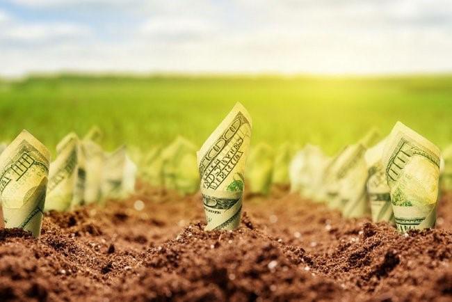 Этапы реализации земельной реформы